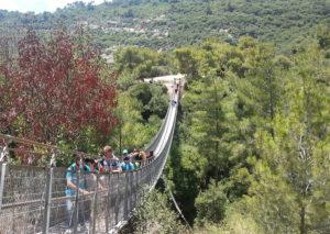 הגשרים התלויים בנשר